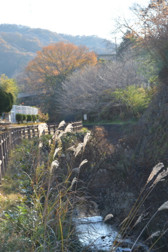 f:id:noronoyama:20141214085927j:image