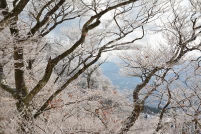 f:id:noronoyama:20141221111441j:image