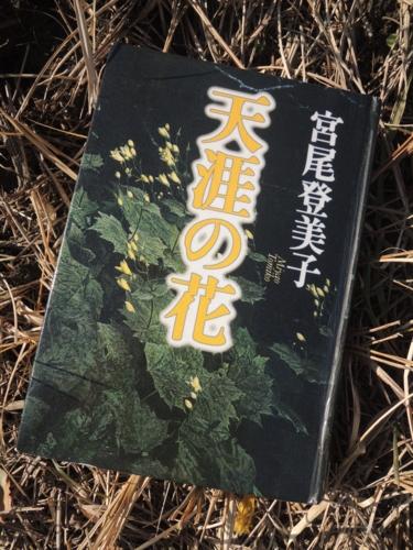 f:id:noronoyama:20150124101218j:image