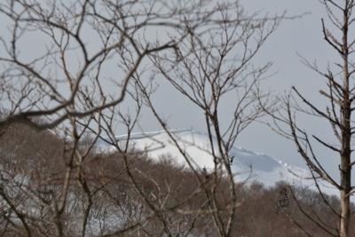 f:id:noronoyama:20150221141935j:image