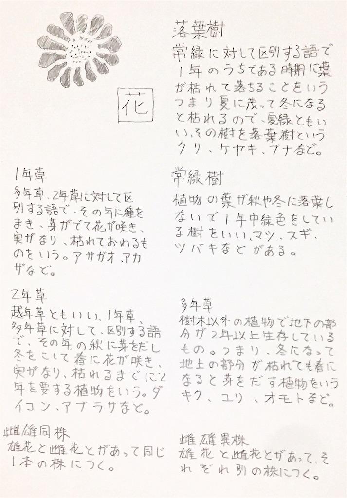 f:id:noronoyama:20181223195840j:image