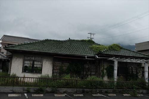 f:id:noronoyama:20190628121639j:plain