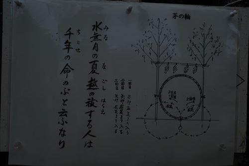 f:id:noronoyama:20190707073635j:plain