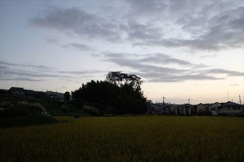 f:id:noronoyama:20191013172536j:plain
