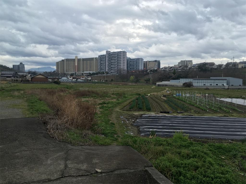 f:id:north-urawa-takao:20190329230245j:image