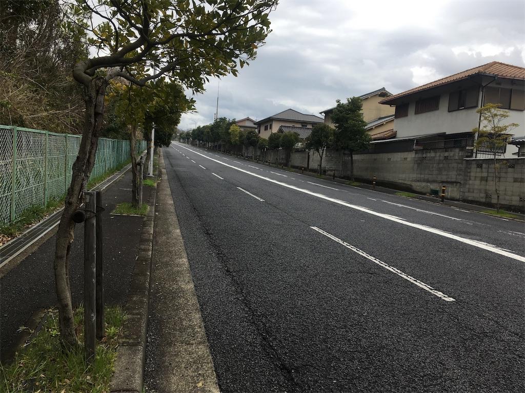 f:id:north-urawa-takao:20190329230831j:image