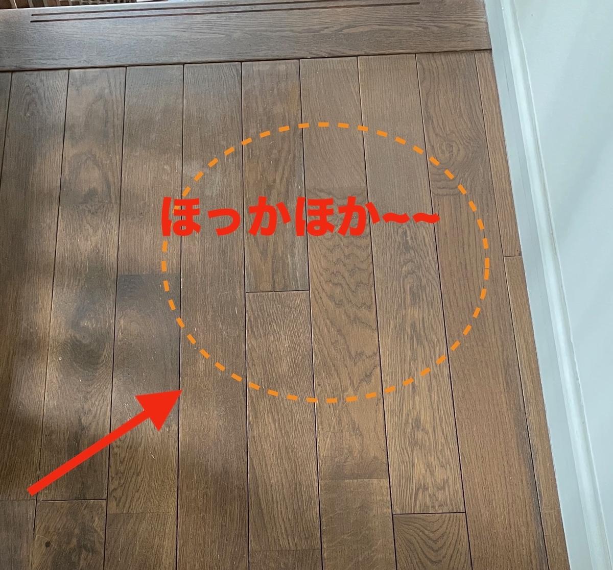 f:id:noru-minineko:20210510202301j:plain