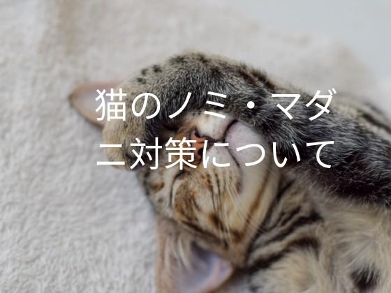 f:id:noru-rate:20190802091052j:image