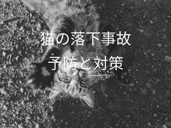 f:id:noru-rate:20190803090540j:image