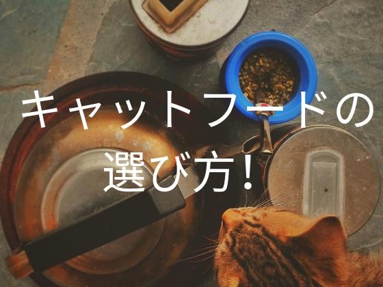 f:id:noru-rate:20190919145518j:image