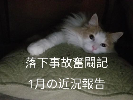 f:id:noru-rate:20190924093153j:image