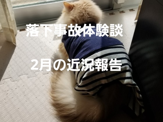 f:id:noru-rate:20190929093759j:image