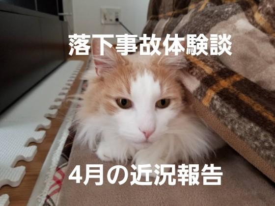 f:id:noru-rate:20191003125534j:image