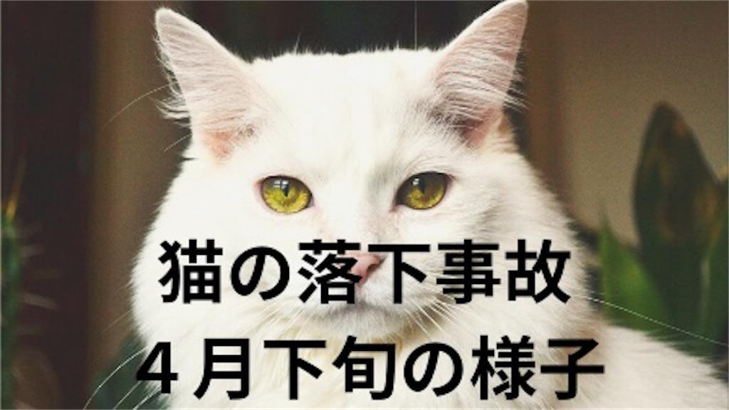 f:id:noru-rate:20200514143928j:image