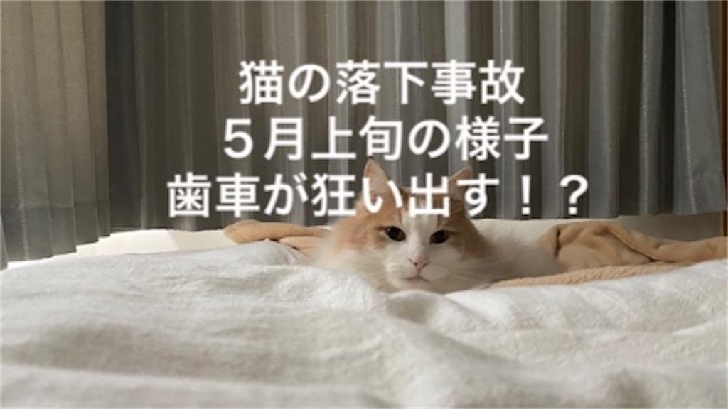 f:id:noru-rate:20200515101641j:image