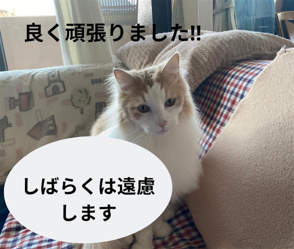 f:id:noru-rate:20200515114026p:image