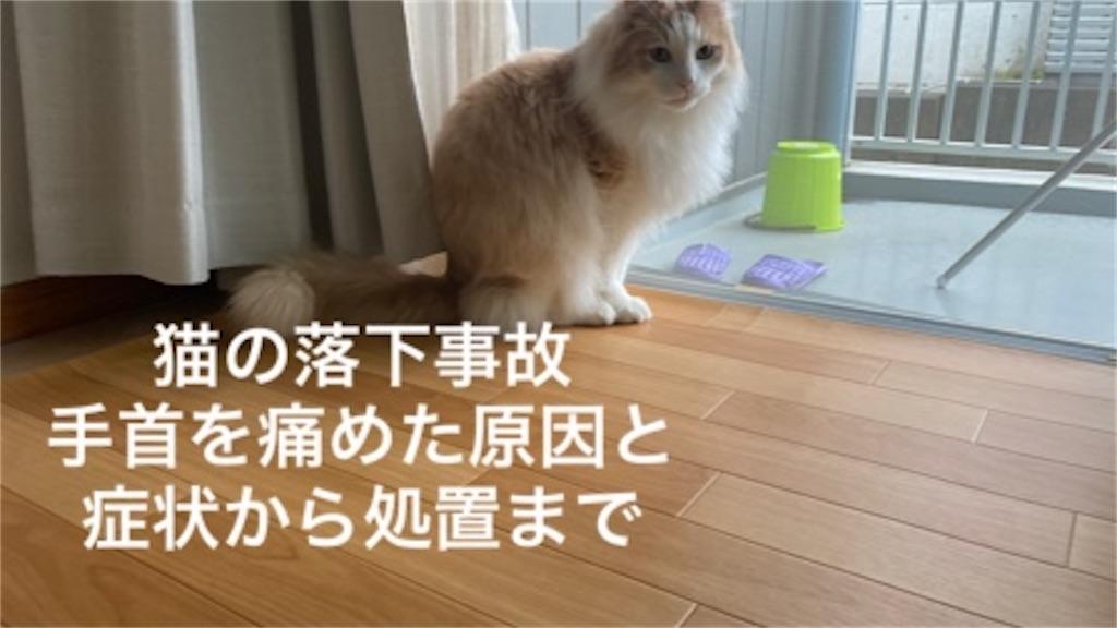 f:id:noru-rate:20200516152218j:image