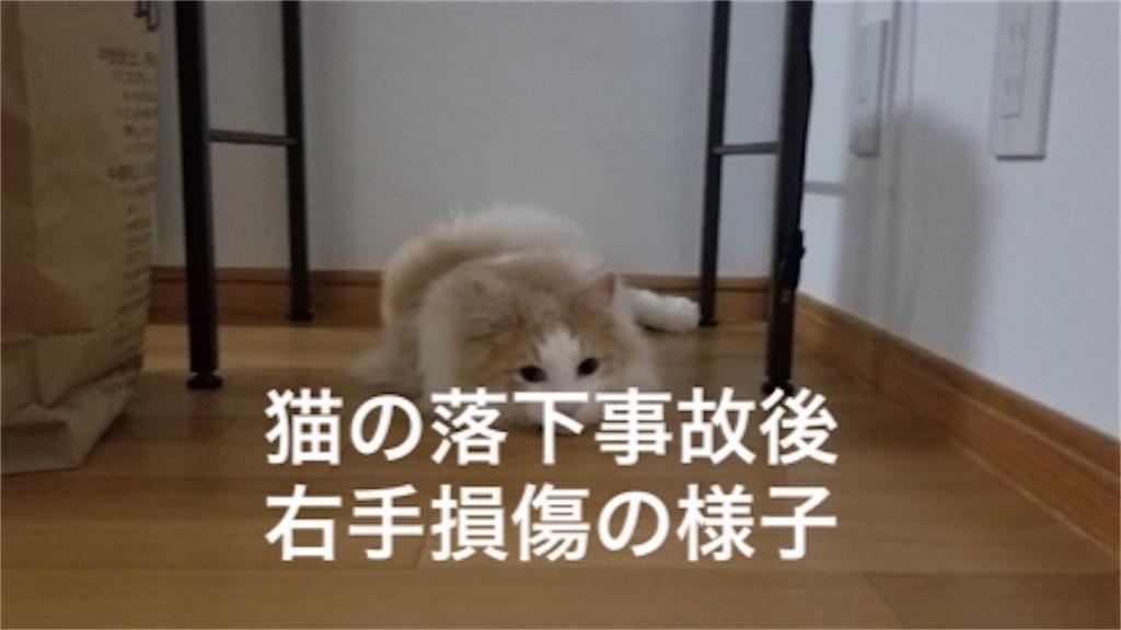 f:id:noru-rate:20200518094223j:image