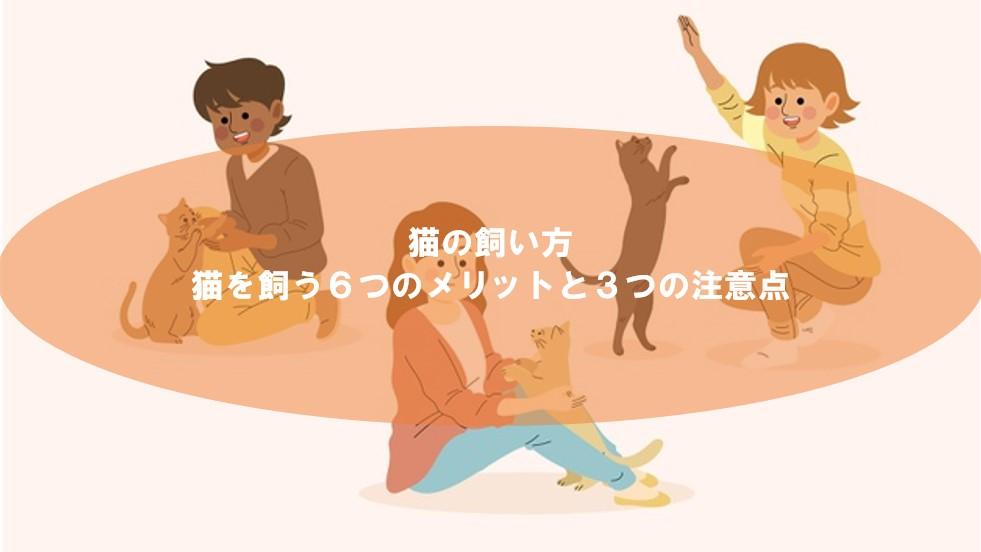猫を飼う6個のメリットと3つの注意点