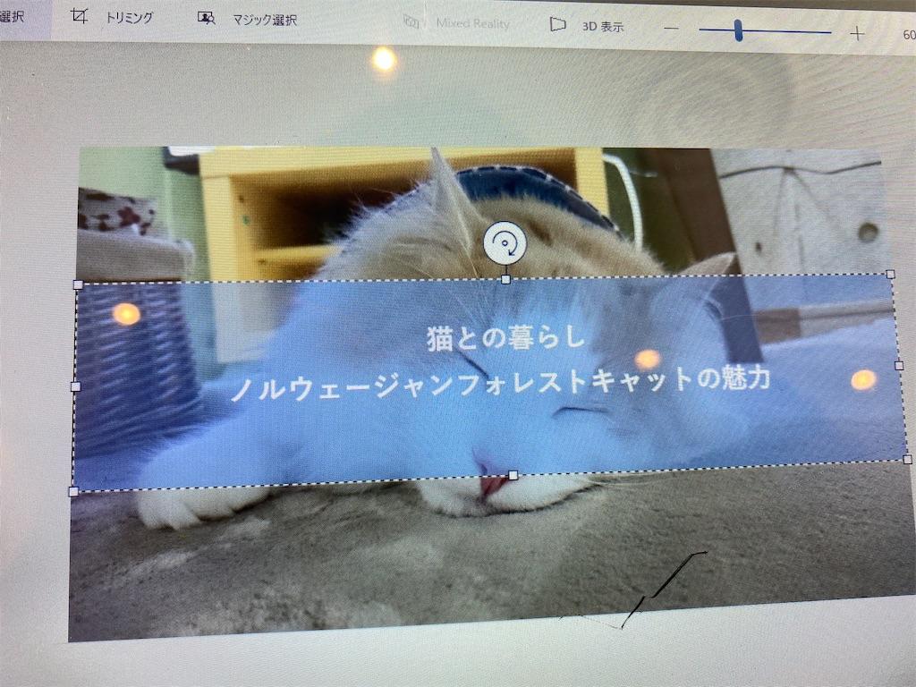 f:id:noru-rate:20200602094249j:image