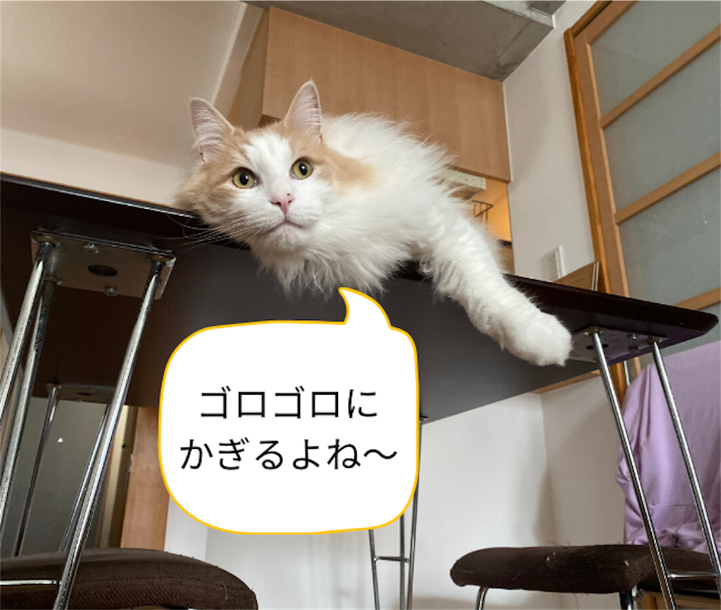 f:id:noru-rate:20200606094955p:image