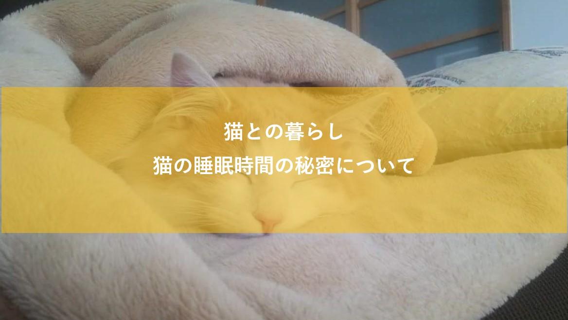 f:id:noru-rate:20200608141348j:plain