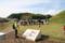 奈良・高取町 観光ボランティアガイドによる説明を聞く参加者