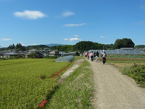 f:id:noruho-club:20120925103347j:image