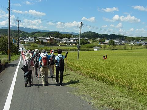 f:id:noruho-club:20120925115751j:image
