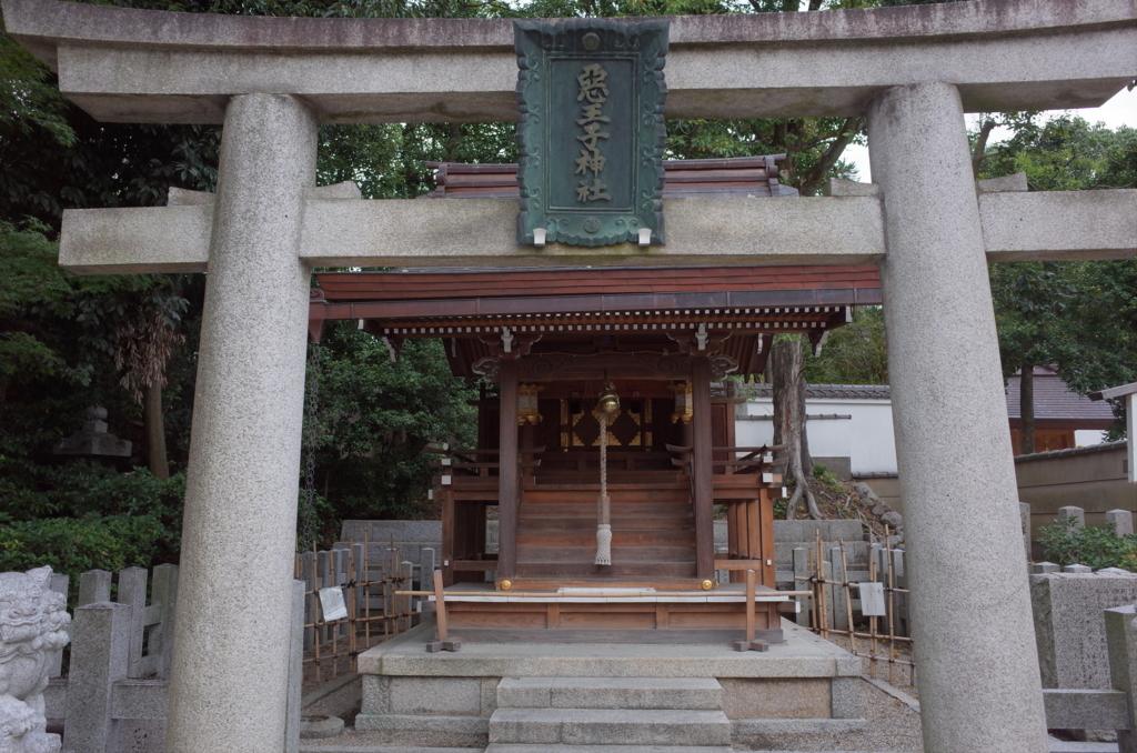f:id:nosutoradamu:20171010005408j:plain
