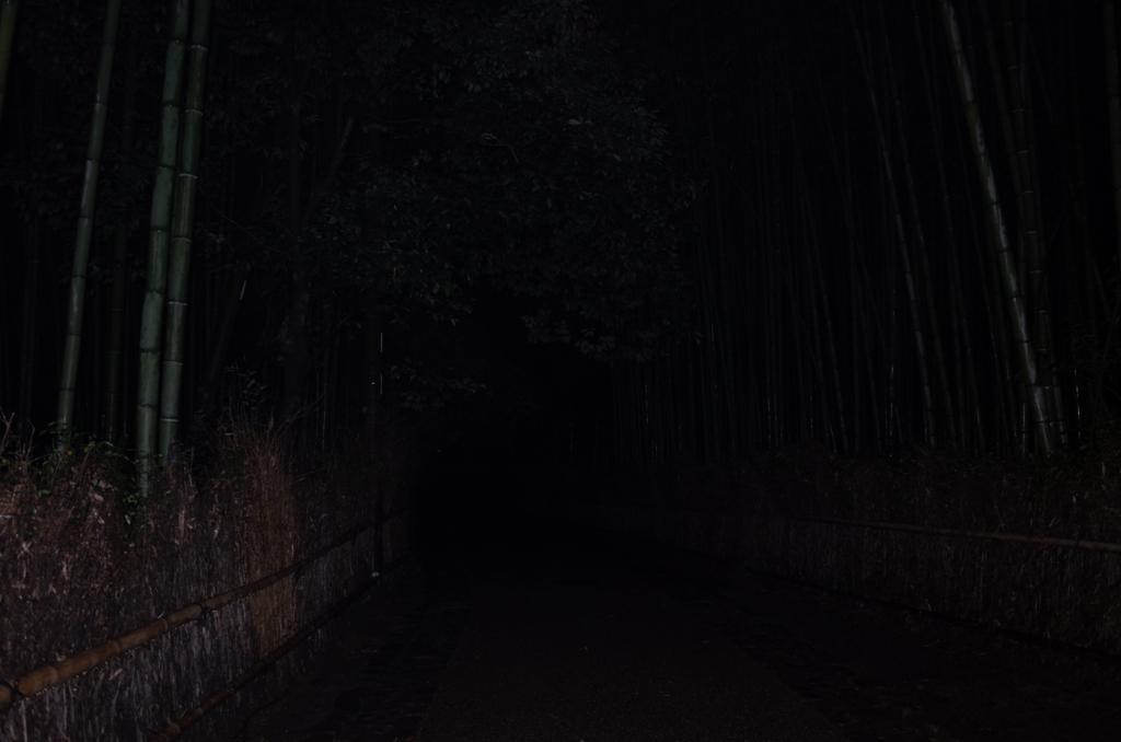 f:id:nosutoradamu:20171012011858j:plain