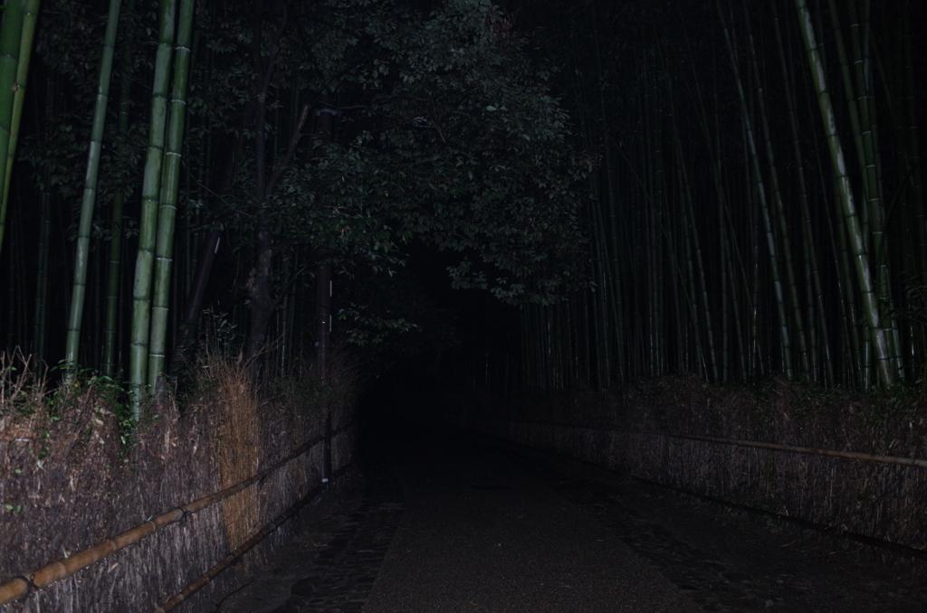 f:id:nosutoradamu:20171012011958j:plain