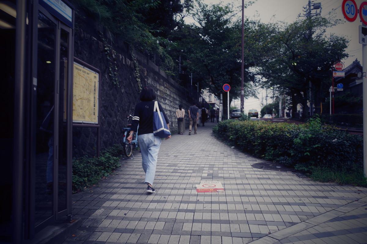 f:id:nosutoradamu:20200916232051j:plain