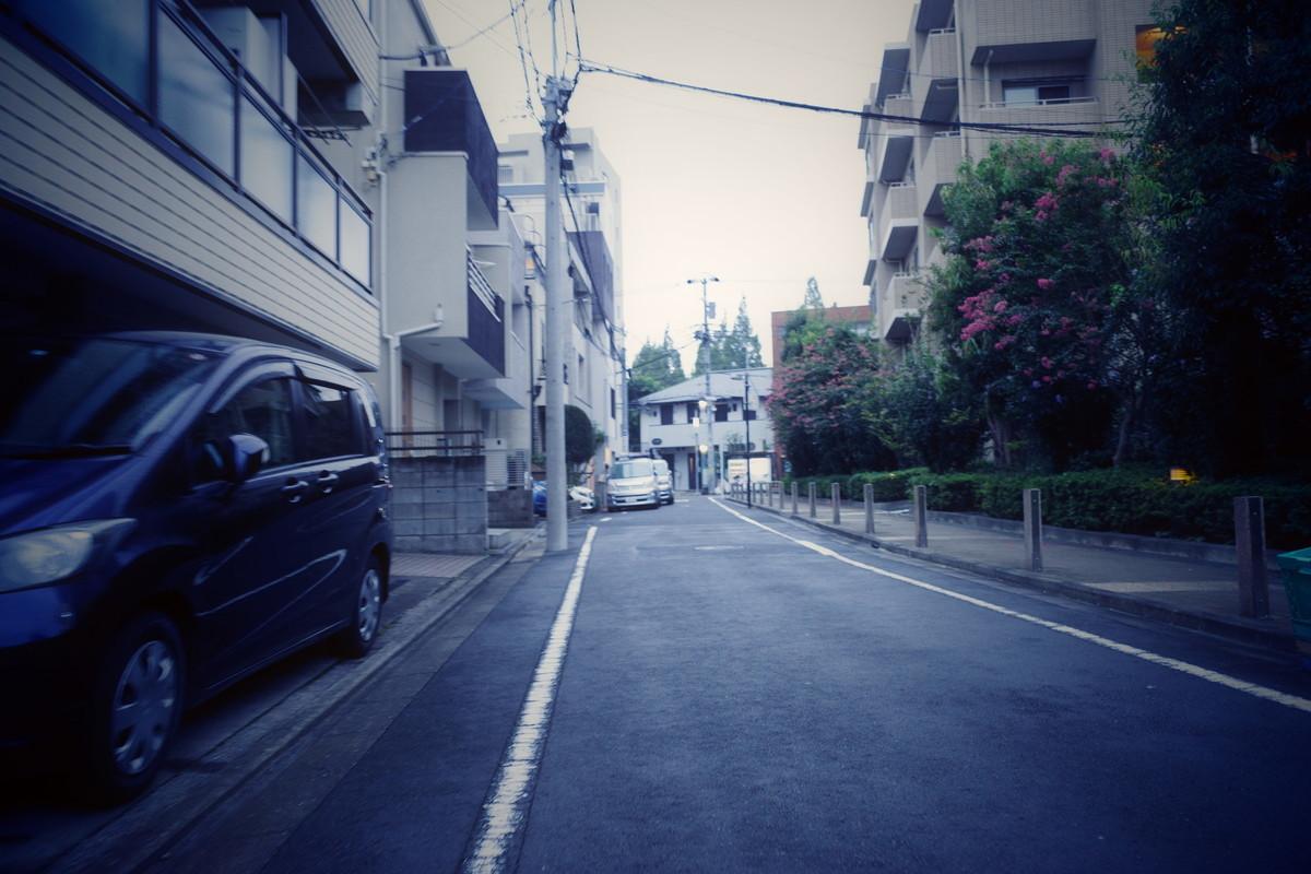 f:id:nosutoradamu:20200916234550j:plain