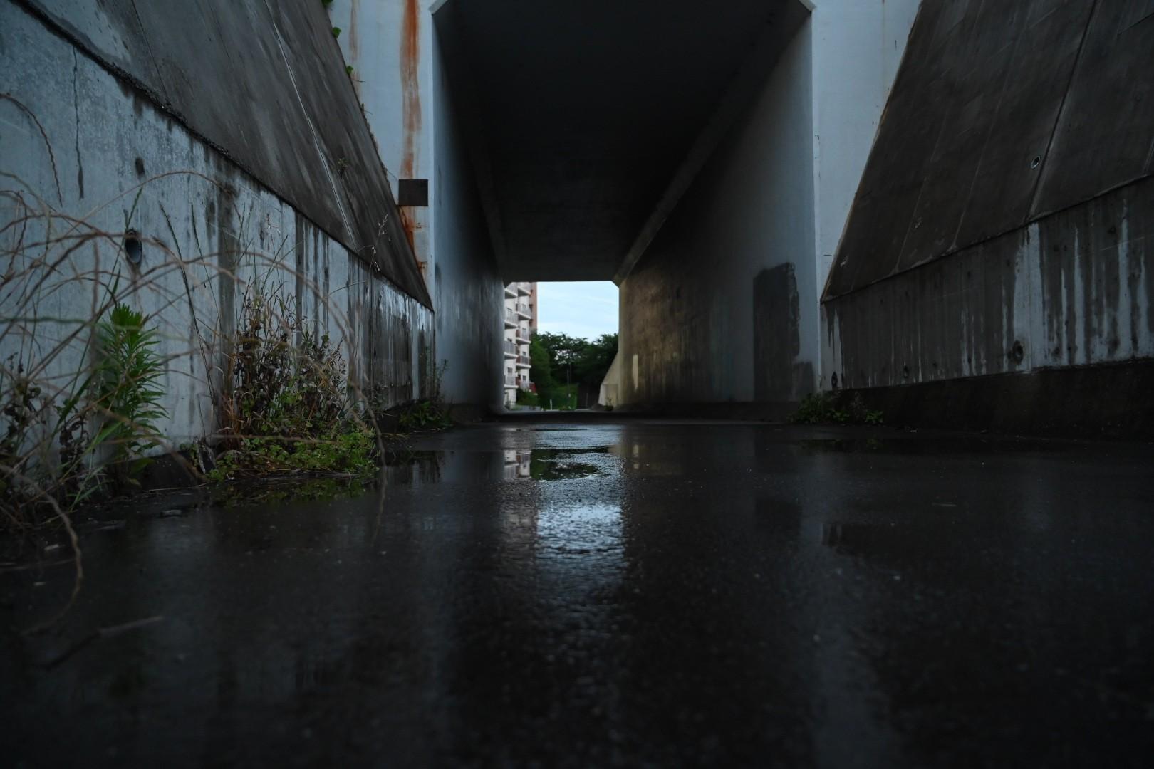 f:id:nosutoradamu:20210616111859j:image