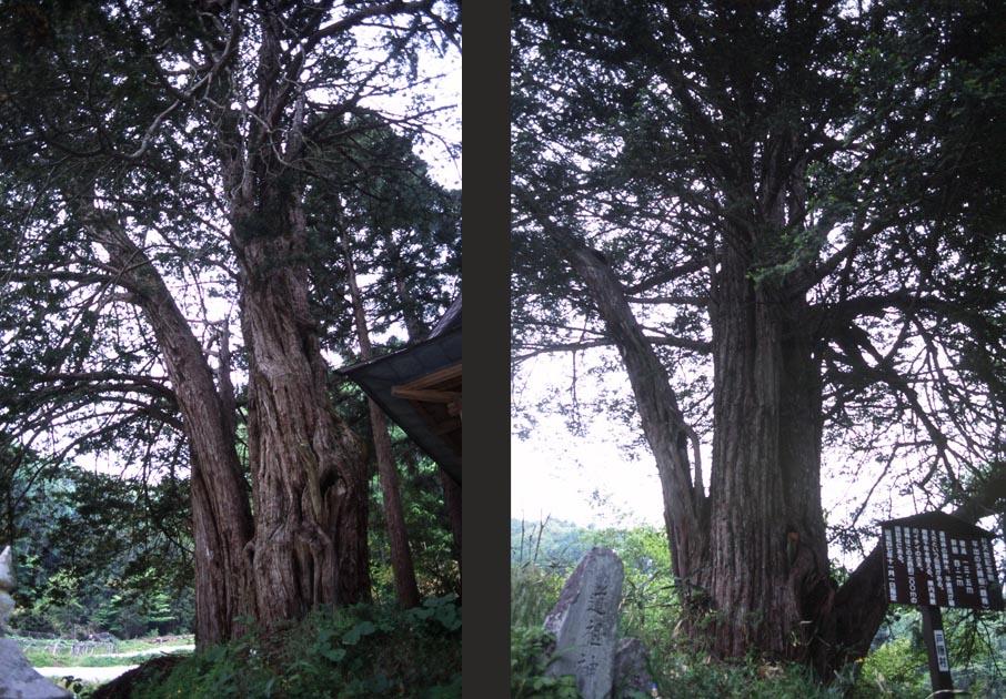 f:id:notahiro:20170513134832j:plain