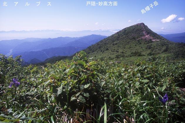 f:id:notahiro:20170702111822j:plain