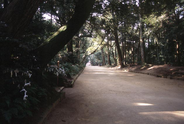 f:id:notahiro:20180114141113j:plain