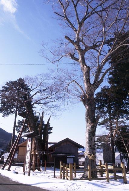 f:id:notahiro:20180127112134j:plain