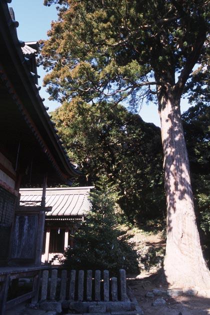 f:id:notahiro:20180221100809j:plain