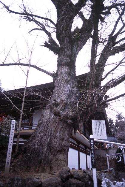 f:id:notahiro:20180327101430j:plain