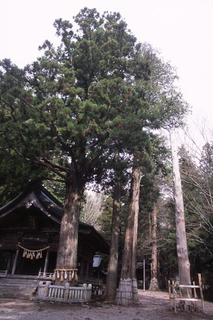 f:id:notahiro:20180414110008j:plain