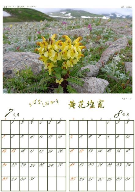 f:id:notahiro:20181227143338j:plain
