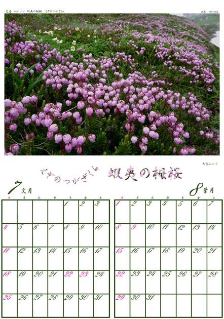 f:id:notahiro:20201213111119j:plain