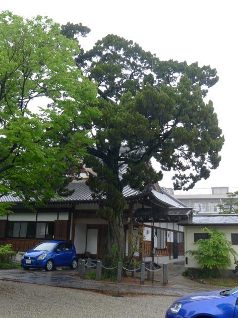 f:id:notahiro:20210429114447j:plain
