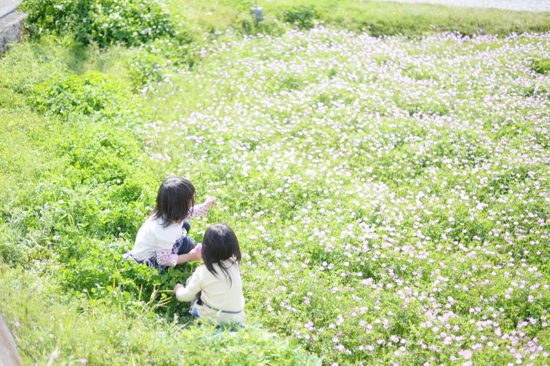 f:id:notefarm-kagoshima:20160402212352j:plain