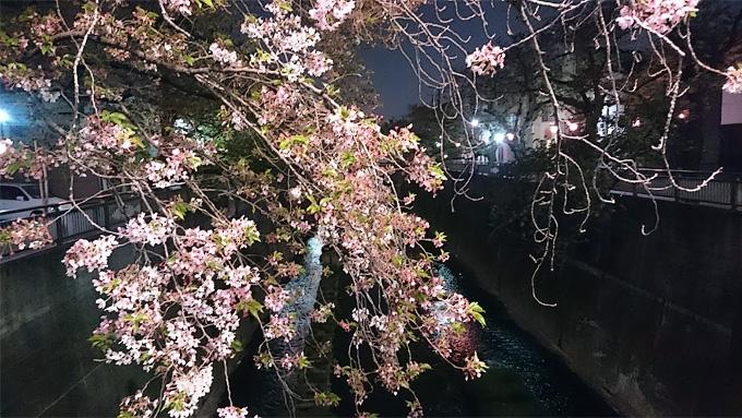 f:id:notsushu:20180405111409j:plain