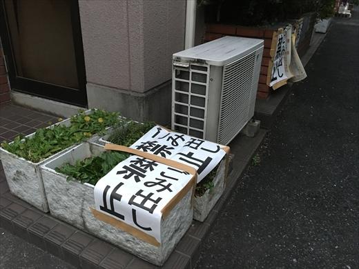 f:id:nottawashi:20170101213010j:plain