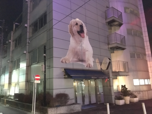 f:id:nottawashi:20170217194312j:plain