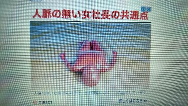 f:id:nounaikaikaku:20171209200236j:image